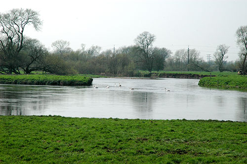 The confluence of the rivers Dove and Trent at Newton Solney